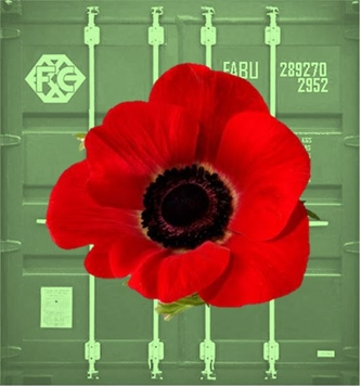 We Will Remember Them. We Will Honor Them.
